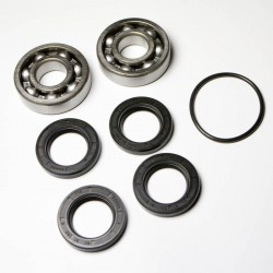 WSM DRIVE SHAFT REPAIR KIT KAW 550
